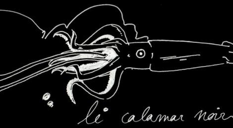 le calamar noir
