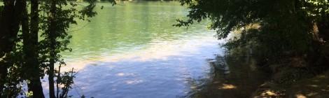 Une promenade au bord de la Seine - Les Mains Vertes